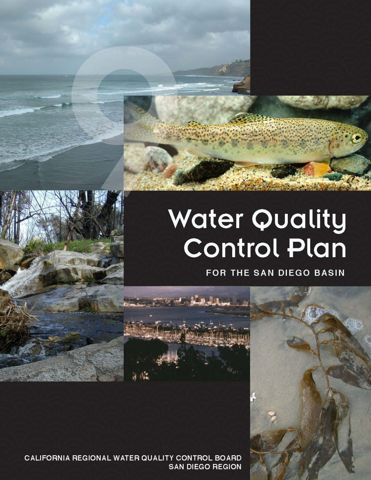 Water Quality Control Plan for the San Diego region