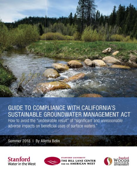 Pages from Woods Groundwater Mgmt Act Report v06 WEB-2