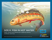 WEBINAR: State of the Salmonids - Fish in Hot Water